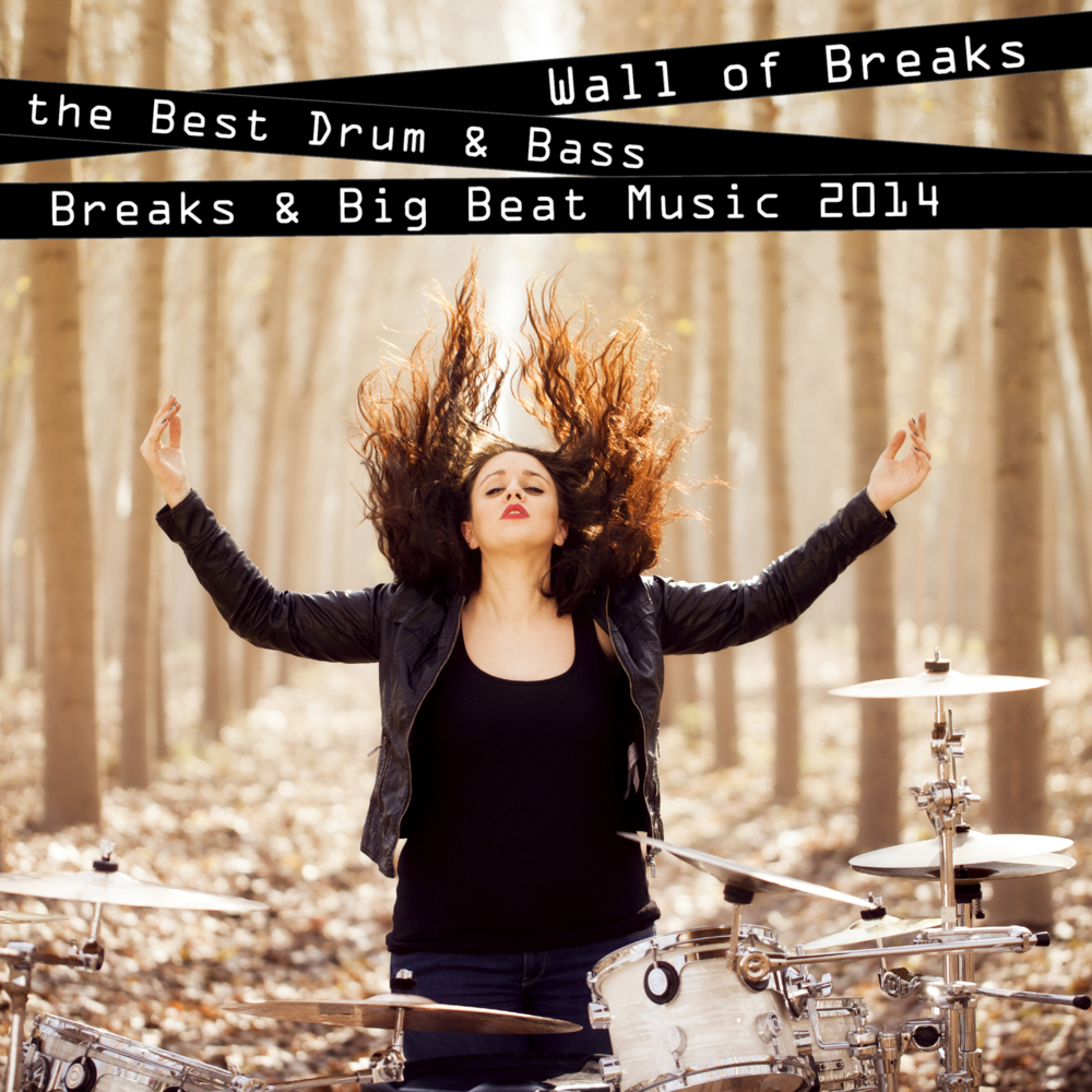 Wall of Breaks - The Best Drum & Bass, Breaks & Big Beat Music 2014, Breakdrum Recordsings